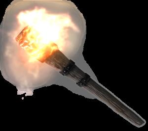 TESV_Torch (1)